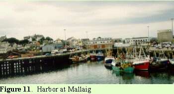 Harbor at Mailaig